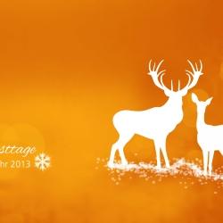 Weihnachtskarte FORTBILDUNG 24